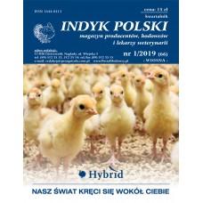 Indyk Polski 66 (1/2019)